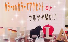 2017june_campaign